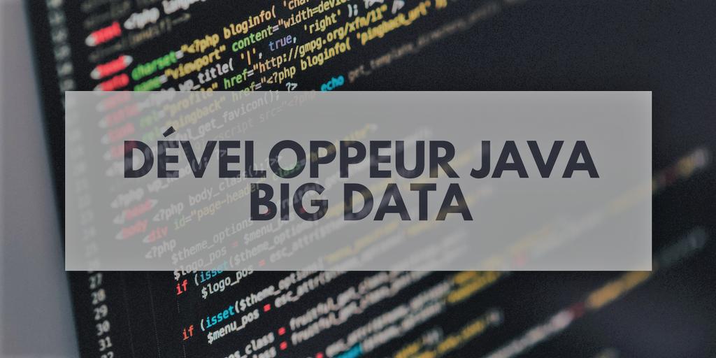 Offre emploi Développeur Java Big Data